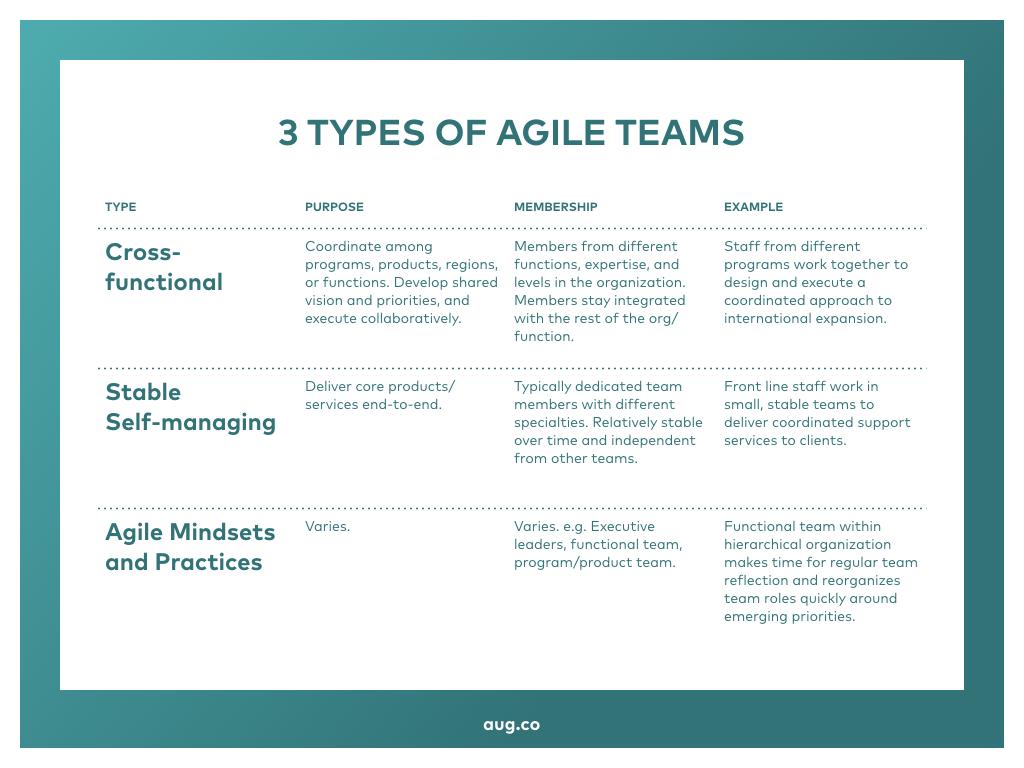 3 Types of Agile Teams.001